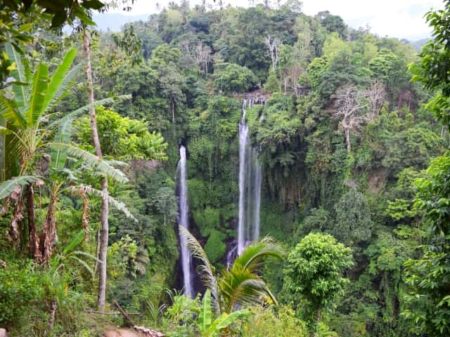 Private multiday-tours in Bali Sekumpul